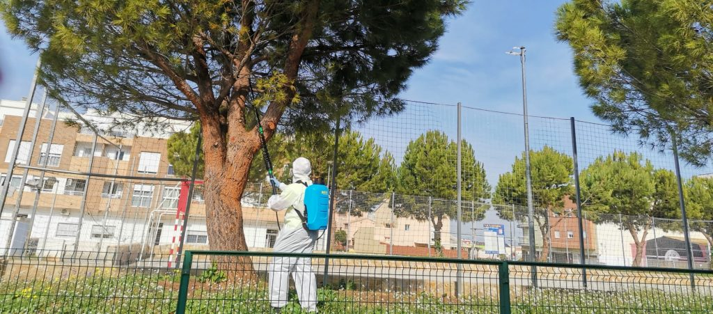 Se ve a un operario de nomasbixos pulverizando un pino de un jardín público.
